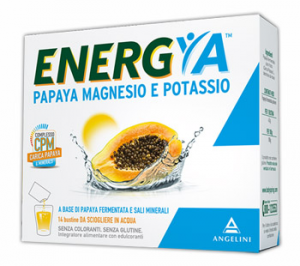 ENERGYA PAPAYA FERMENTATA MAGNESIO POTASSIO 14 BUSTINE