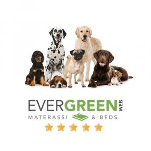 Letto per Cani alto 8 cm Lavabile Materasso Multiuso per Animali Domestici Cuscino Ortopedico in Waterfoam Cuccia Tappeto Sofa Imbottitura 100% Fiocco Effetto Piuma Tessuto Verde Chiaro