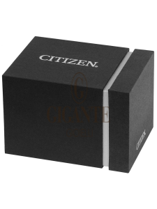 Citizen Aviator AT2460-89L