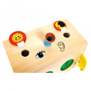 La scatola dei sensi