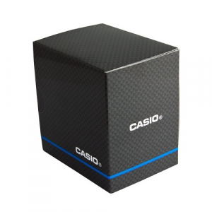 Casio Retro Collection A168WEGB-1BEF