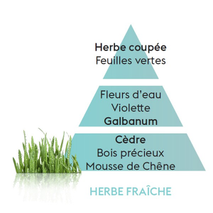 Maison Berger Ricarica Herbe Fraiche 500 ml