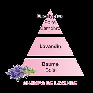 Maison Berger ricarica Chant de Lavande 500ml