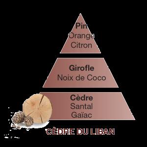 Maison Berger ricarica Cedre du Liban 500 ml