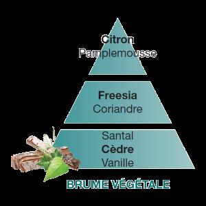 Maison Berger ricarica Brume Végétale 500ml