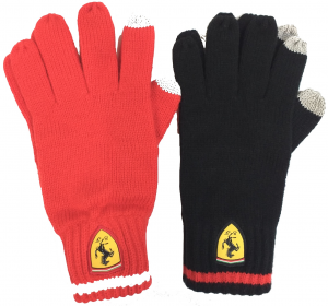 SF FW Knitted Gloves
