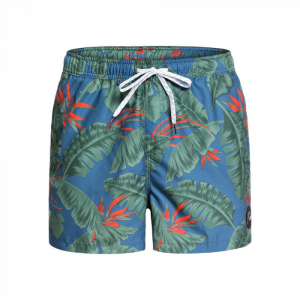 Costume QuikSilver Volley Poolsider ( More Colors )