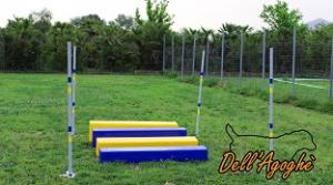 Salto in lungo agility in gomma piuma, conforme alle ultime direttive enci-fci, Dell'Agoghè