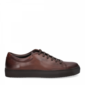 Griffi's sneaker vitello marrone-2