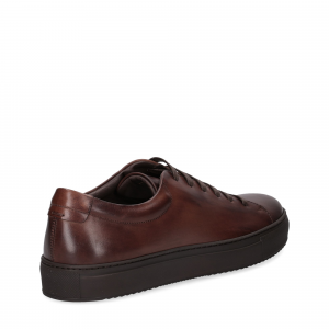 Griffi's sneaker vitello marrone-5