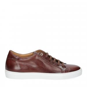 Corvari sneaker 9650 marrone-1