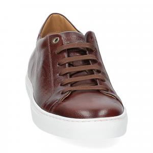 Corvari sneaker 9650 marrone-2