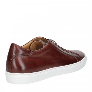 Corvari sneaker 9650 marrone-4