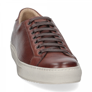 Griffi's sneaker 1102 pelle forata marrone-2