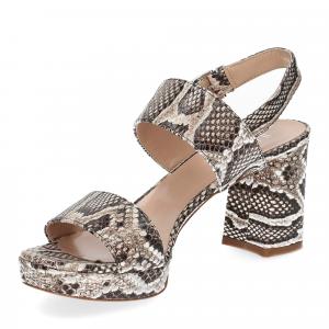 Il laccio Sandalo E2700 pitone roccia-4
