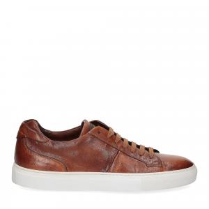 Corvari Sneaker honey cognac-2