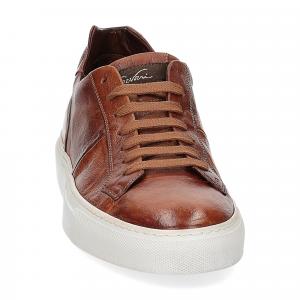 Corvari Sneaker honey cognac-3