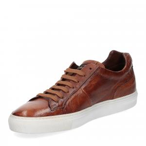 Corvari Sneaker honey cognac-4