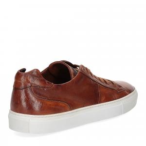 Corvari Sneaker honey cognac-5