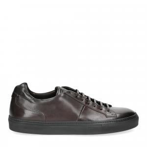 Corvari sneaker 9214 ebano-2