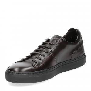 Corvari sneaker 9214 ebano-4