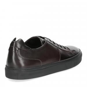 Corvari sneaker 9214 ebano-5
