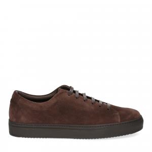 Griffi's sneaker 732 camoscio marrone-1
