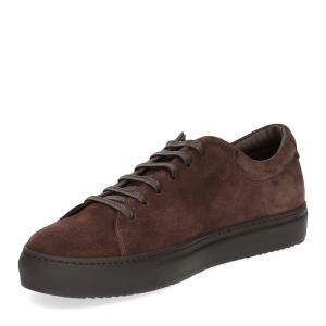 Griffi's sneaker 732 camoscio marrone-4