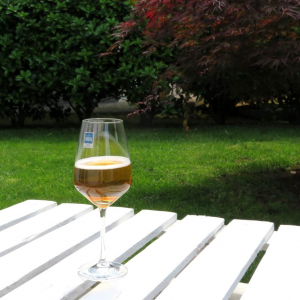 Calice vino bianco Taste 49cl Schott  Zwiesel