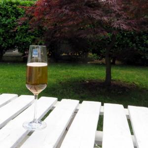 Calice vino bianco Taste 22cl Schott  Zwiesel
