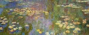 Water lilies - Stampa su tela