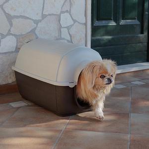 KENNY  Cuccia in resina termoplastica per cani - varie misure Ferplast