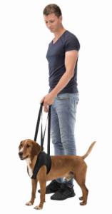 Imbracatura di sostegno per cani Trixie