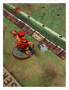 Blood Bowl Pitch - Fantasy Football Pitch - Noble Pitch