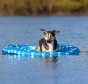 Gommoncino gonfiabile per cani 97x65cm  Trixie