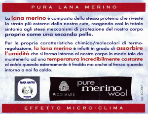 RAGNO. Mutanda Uomo a gamba lunga - 01800T con apertura. 100% Lana Merino.
