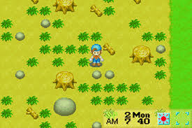 Harvest Moon: friends of mineral town - USATO - GBA