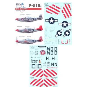 P-51DS