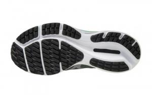Mizuno wave Rider 24 scarpa running donna