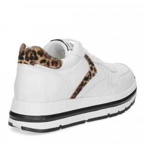 Voile Blanche Maran bianco leopard-5