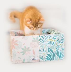OFFERTA!!! SCHESIR CAT UMIDO IN BUSTA - edizione speciale