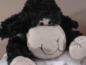Coppia di coperte con pecorella in peluche