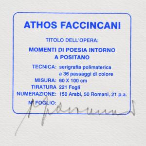 Faccincani Athos Serigrafia polimaterica Formato cm 60x100