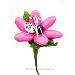 Margherita rosa con ragnetto Fiore di Confetti William Di Carlo Sulmona - Italy