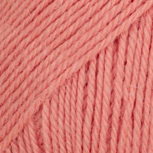 rosa-uni-colour-21