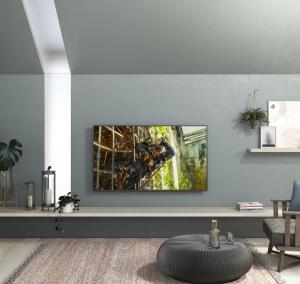 Panasonic TX-49HX900E TV 124,5 cm (49