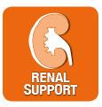MONGE VET SOLUTION RENAL CANINE ADULT 2 KG