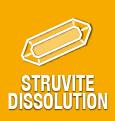 MONGE VET SOLUTION URINARY STRUVITE FELINE PATE' ADULT 100 GR