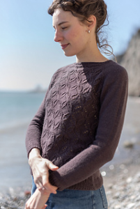 Workshop online: Estrella Pullover By Toronto