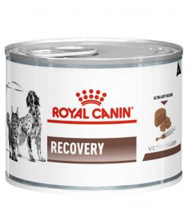 Royal Canin - Veterinary Diet Canine/Feline - Recovery - 195g x 12 lattine